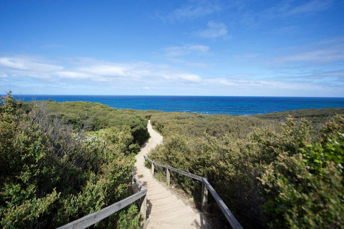 Coastal interpretive walks - Great Ocean Road Coast Committee